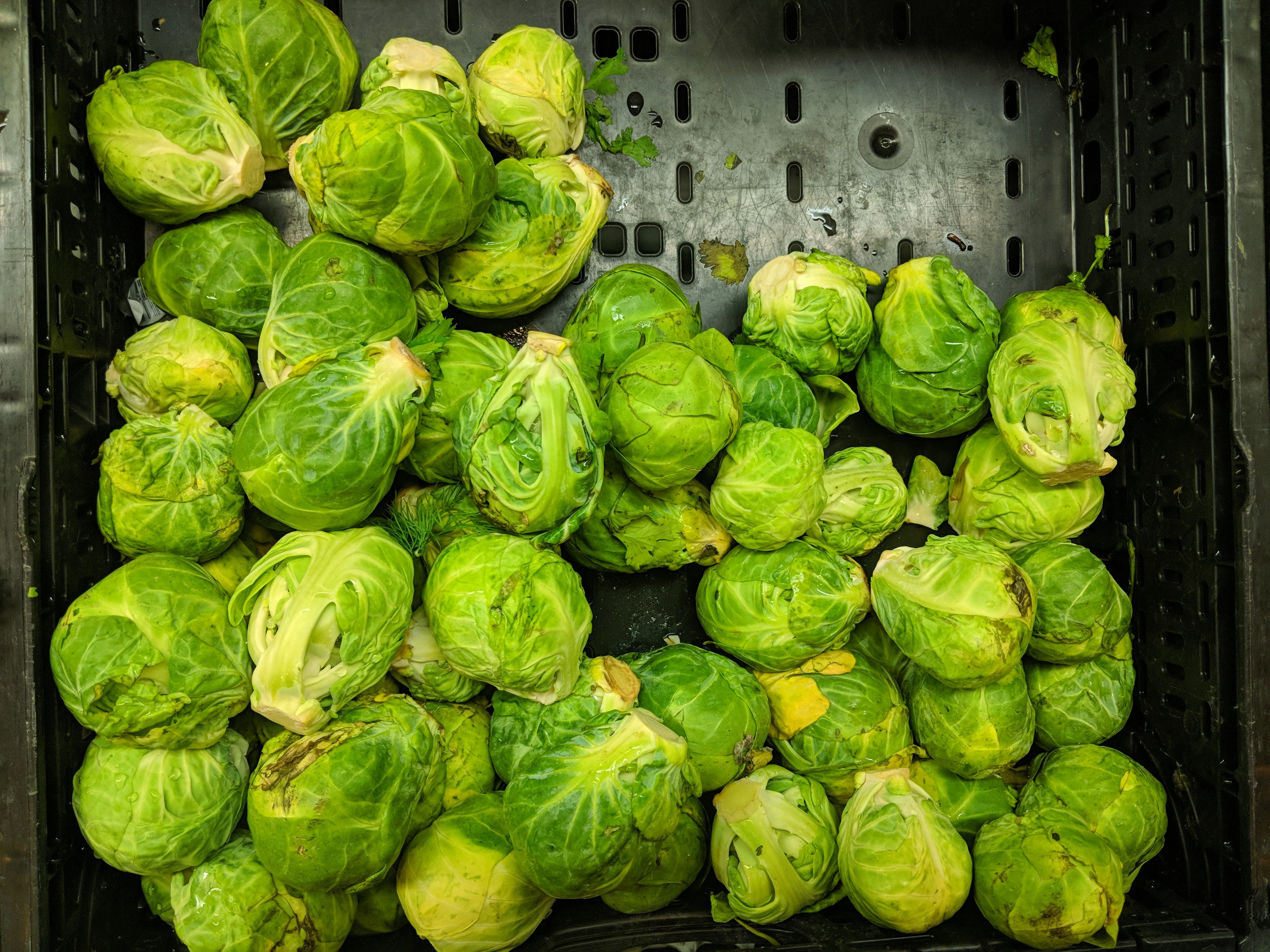 Chilli and Garlic Brussels Sprouts